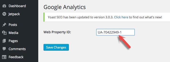 Start up Google Analytics