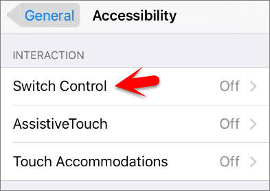 How to Control iPhone with Head Gesture?