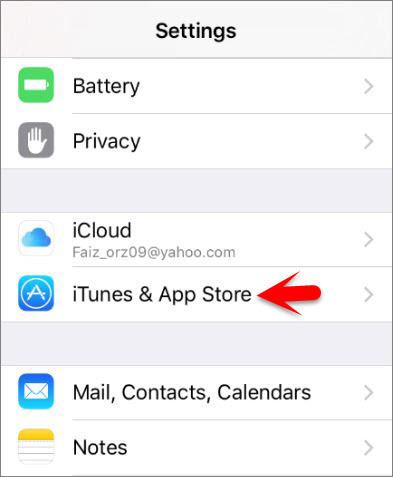 iTunse & App Store