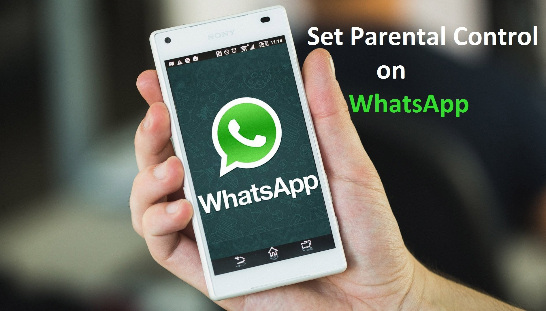How to Set Parental Control on WhatsApp - wikigain